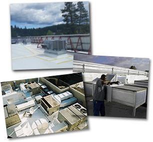 Pacific Weathershield, Providing Comprehensive Roofing Solutions